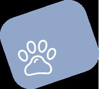 Haustiere erlaubt Hotel Mediterraneo